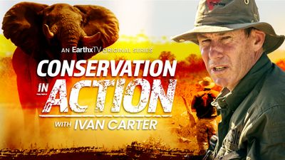 Promo for Conservation in Action