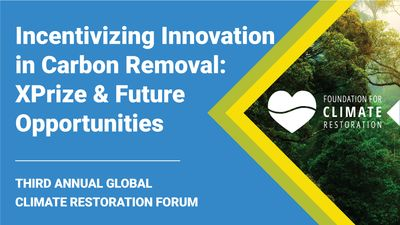 E7 - Incentivizing Innovation in Carbon Removal