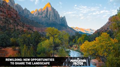 S1E7 - Rewilding: New Opportunities