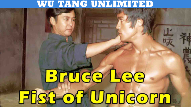 Bruce Lee's Fist Of Unicorn