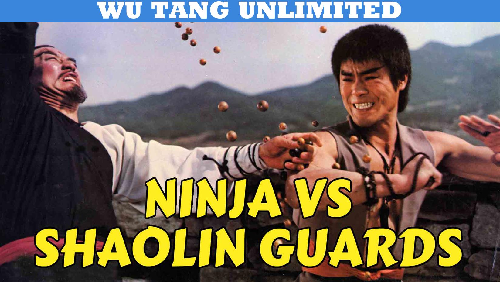 Ninja vs Shaolin Guards