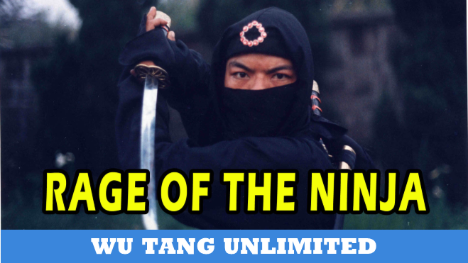 Rage Of The Ninja