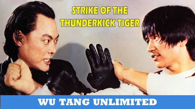 Strike Of The Thunder Kick Tiger