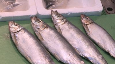 Taste of Japan: Hokkaido